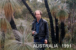 photographing with Nikon                         35mm film camera in 1991 with Kingia australis